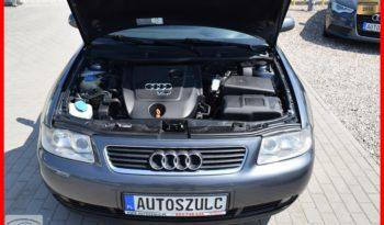 Audi A3 1.9 TDI, Zarejestrowany, Po Lifcie, Ekonomiczny, Opłacony, Bez wkładu, Gwarancja full